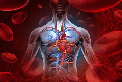 چگونه کربوکسی تراپی به افزایش جریان خون در دست ما کمک می کند؟